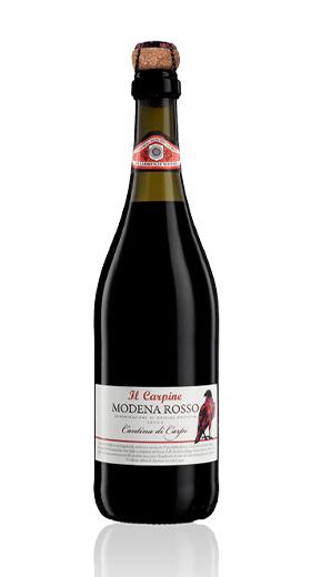 05 - Lambrusco di Modena DOP II Carpine